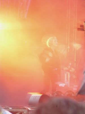 Vanessa Paradis Festival Beauregard 2014