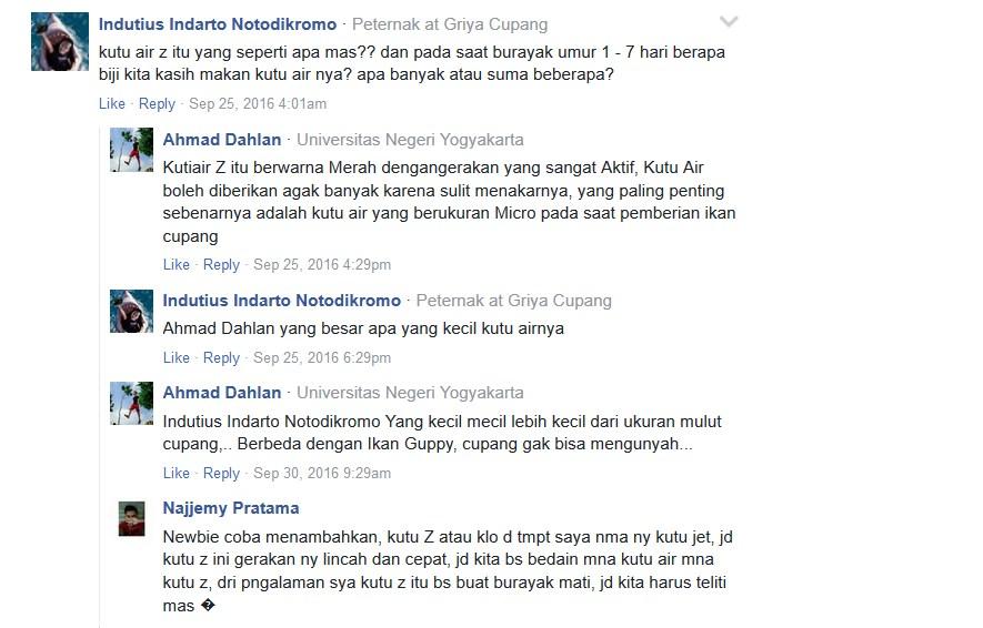 Tanya Jawab cara merawat burayak Cupang serta diskusi respon dari Facebook
