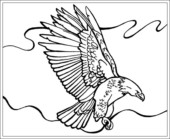 Asumalbilder Pinterest Ausmalbilder Adler