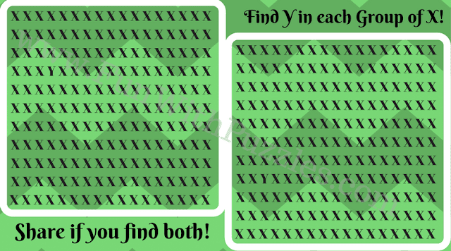 Can You Find Hidden 'Y' Picture Puzzle