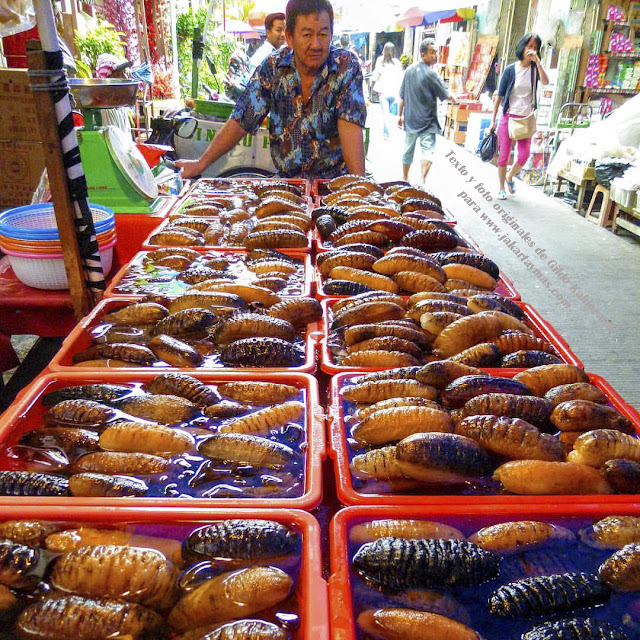 Pepino de mar en Yakarta