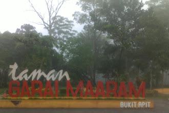 Taman Ngarai Maaram Bukit Apit Kota Bukittinggi