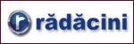 Piese Auto Radacini - import si distributie piese auto