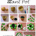 Tuesday Tutorial: Plant Pots!