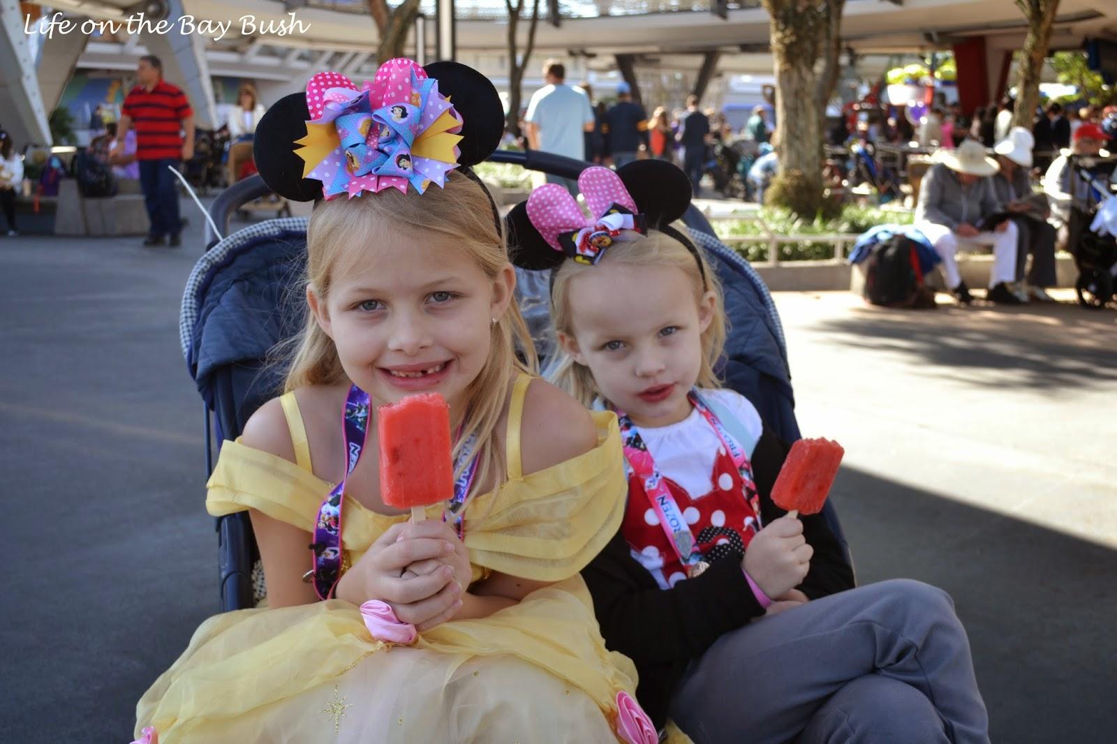 Disney's Magic Kingdom - Popscicle Break