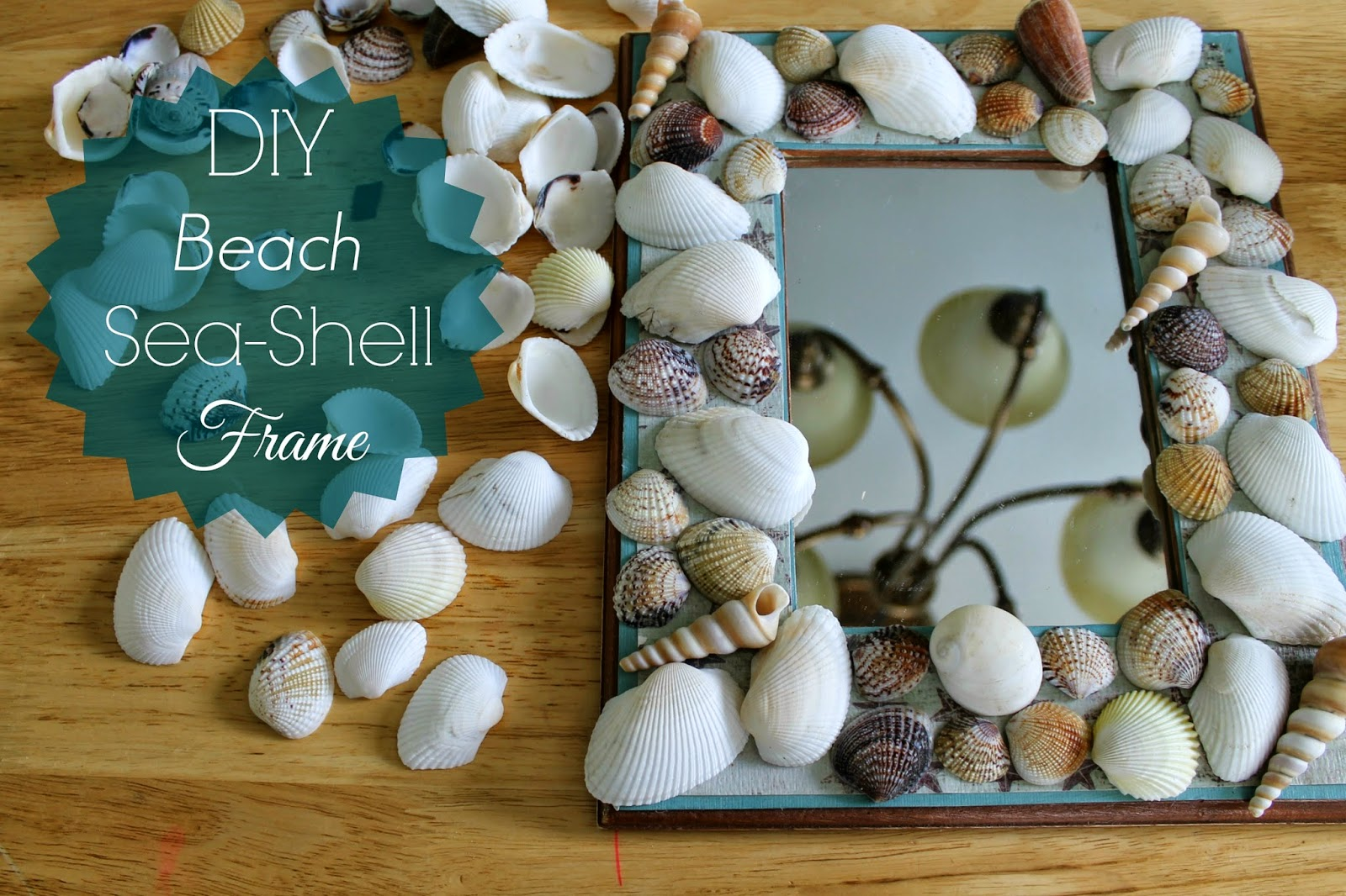 Diy beach sea shell frame outnumbered 3 to 1 for Shell diy