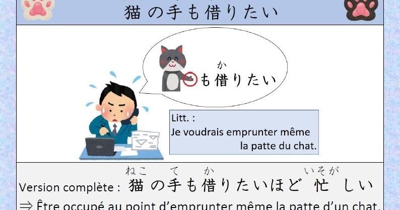 Japonais Kanji Ɨ¥æœ¬èªž Ƽ¢å— Expression Japonaise nj«ã®æ‰‹ã''借りたい Nekonotemokaritai
