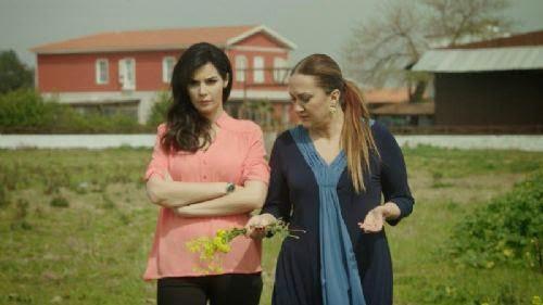 Dila episodul 26 Rezumat - Rıza o îndepărtează pe Arzu