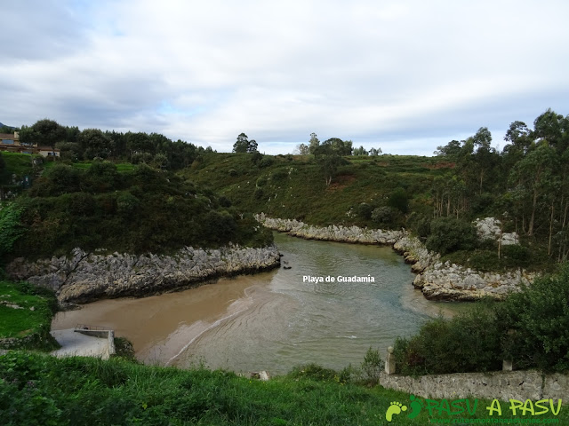 Bufones de Pría: Playa de Guadamía