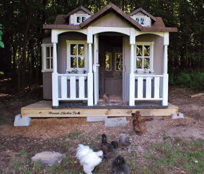 plastic playhouse chicken coop