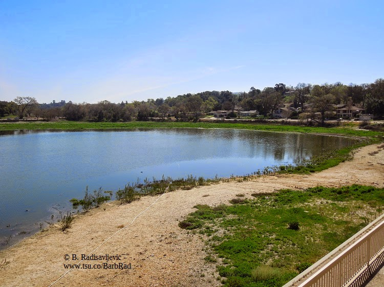 Atascadero Lake, March 9, 2015