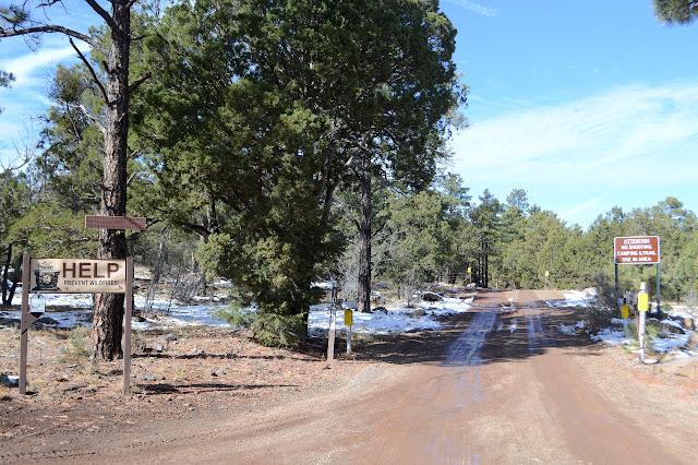 soggy dirt road