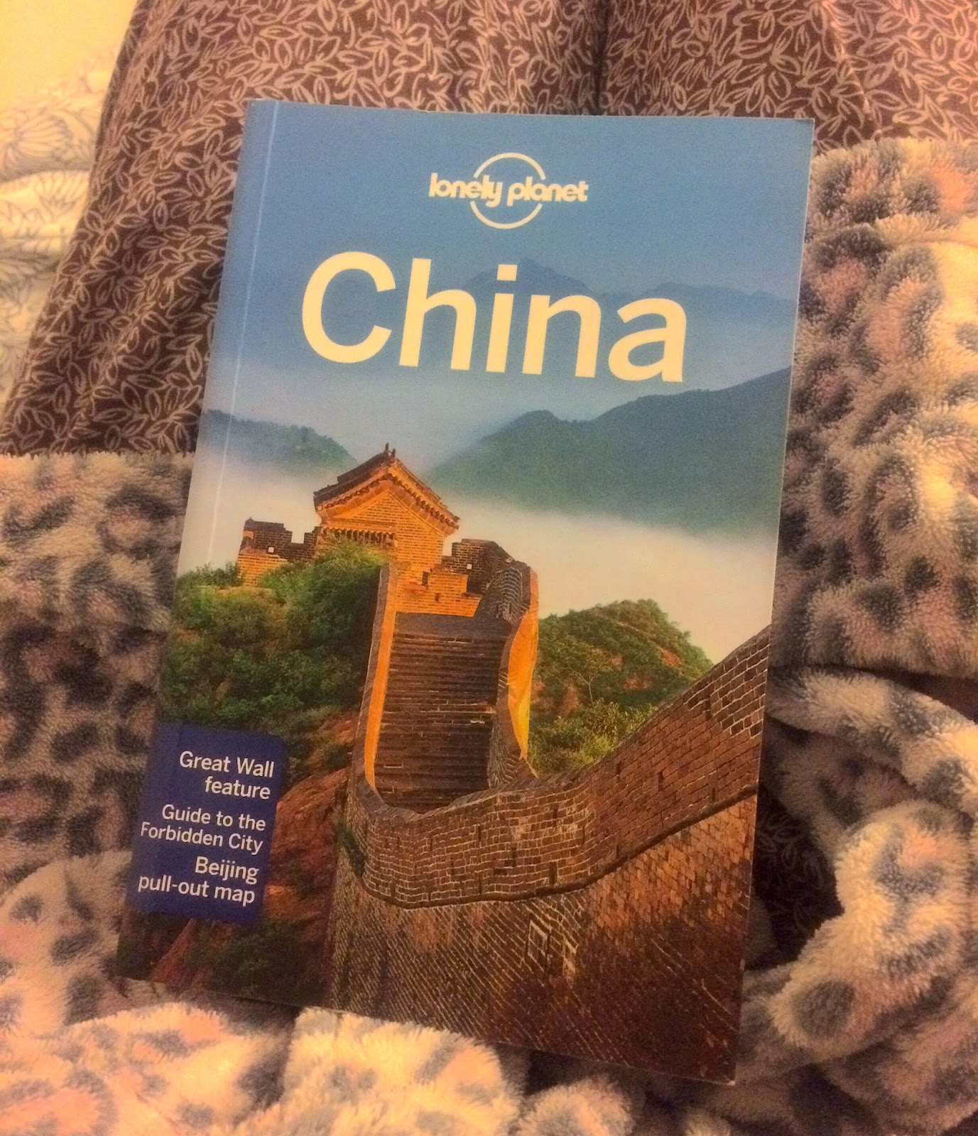 lonely planet china guide book