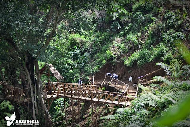 Rumah Pohon Desa Tombo