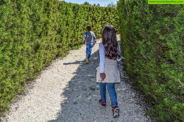 Sanidad destaca la importancia de la atención a los jóvenes con problemas de salud mental