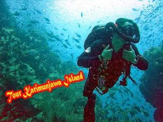 Kisah Penemuan Kapal Nazi di Karimunjawa, Panorama karimunjawa, pantai karimunjawa, pulau karimun jawa, bawah laut karimunjawa, indahnya karimunjawa, tour karimunjawa, paket wisata karimunjawa, trip karimunjawa