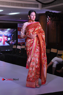 South Indian Celebrities Pos at Love For Handloom Collection Fashion Show  0067.jpg