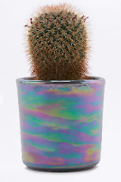 http://www.urbanoutfitters.com/fr/catalog/productdetail.jsp?id=5559288480050&category=GIFTS-UNDER12-EU