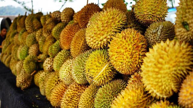 Ternyata Buah Durian Bermanfaat Untuk Kesehatan Kita, Tapi..