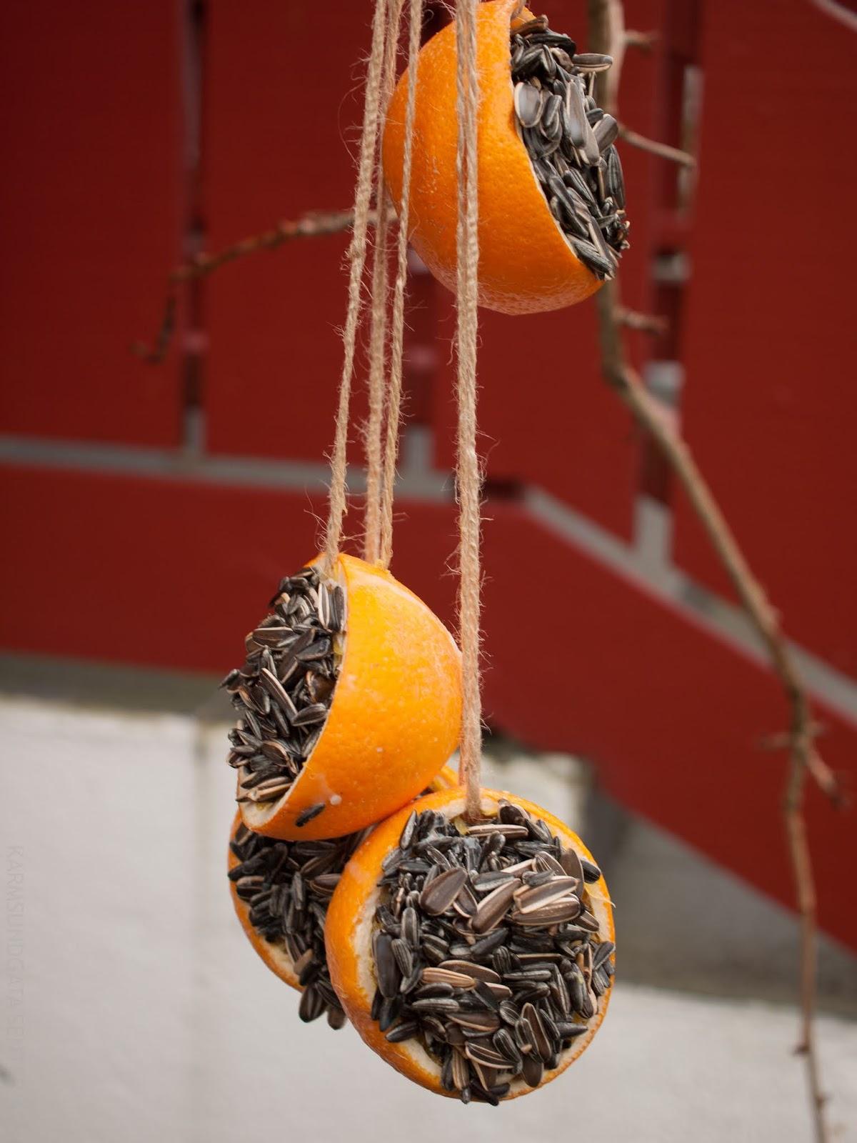 Fuglemat i appelsinskall