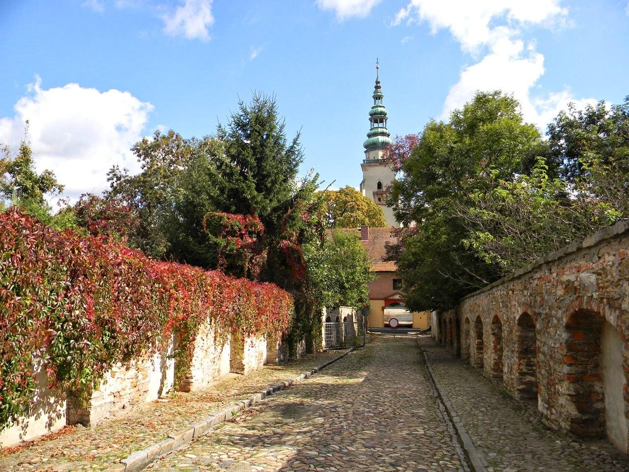 klasztor, Dolny Śląsk, droga, winobluszcz, przyroda, religia