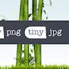 Mudah! Seperti Ini Cara Memperkecil Ukuran Foto Secara Online