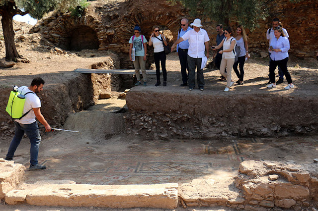 Floor mosaic unearthed in ancient Nysa
