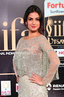 Sonal Chauhan in a stonework Floor Length Silver Designer Gown at IIFA Utsavam Awards March 2017 011.JPG