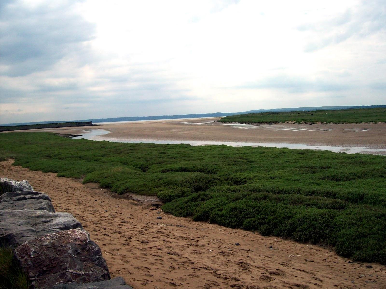 Millenium coastal path