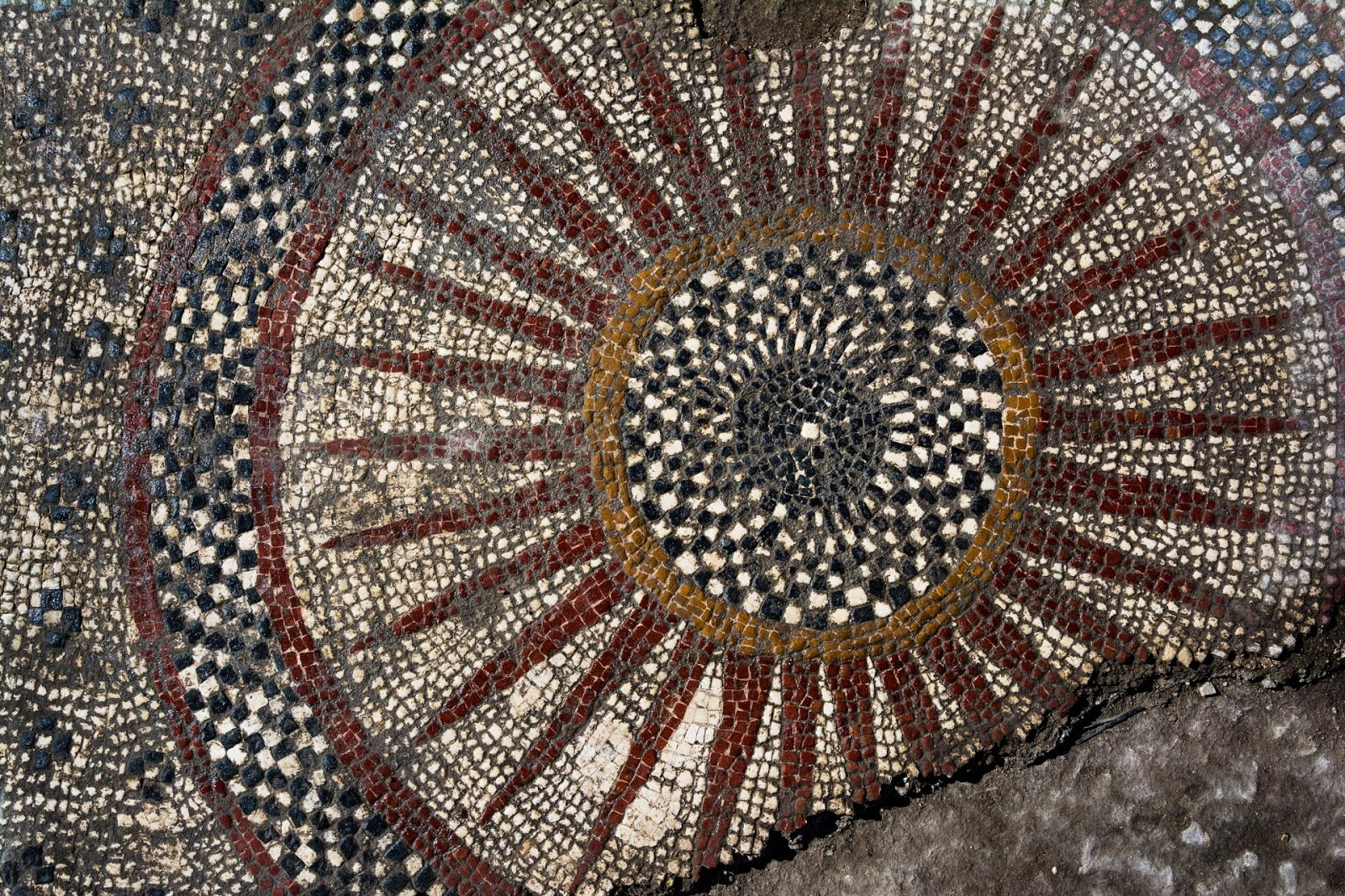 Stunning Roman Mosaics Unearthed Under Construction Site