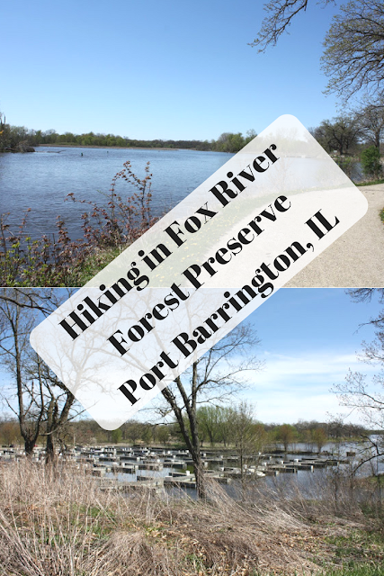 Hiking and Enjoying Fox River Views in Fox River Forest Preserve in Port Barrington, Illinois