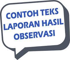 Observasi Adalah? Berikut Pengertian Observasi dan Contoh Teks Observasi