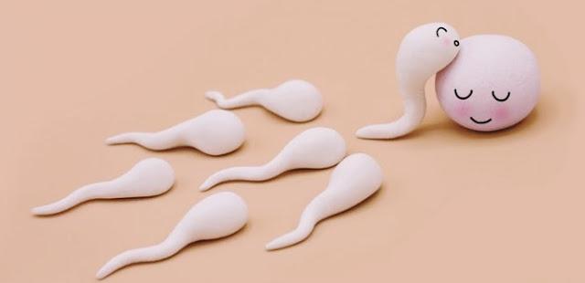 Tanda-tanda sperma Anda normal
