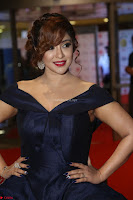 Payal Ghosh aka Harika in Dark Blue Deep Neck Sleeveless Gown at 64th Jio Filmfare Awards South 2017 ~  Exclusive 097.JPG
