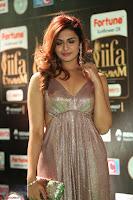 Telugu Actress Aarthi in Deep Neck Backless Golden Gown at IIFA Utsavam Awards 2017 Exclusive 36.JPG