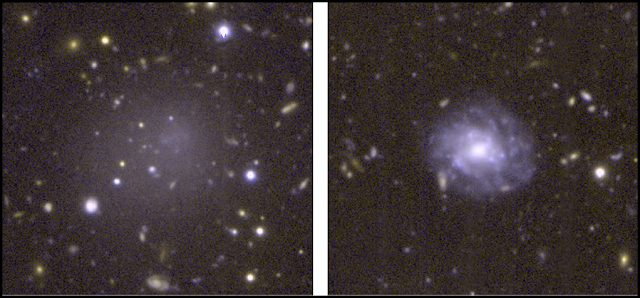 DGSAT I (left), an ultra-diffuse galaxy (UDG), is shown next to a normal spiral galaxy (right) for comparison. Both are similar in size, but UDGs like DGSAT I have so few stars, you can see right through them, to the galaxies in the background. CREDIT: A. ROMANOWSKY/UCO/D. MARTINEZ-DELGADO/ARI