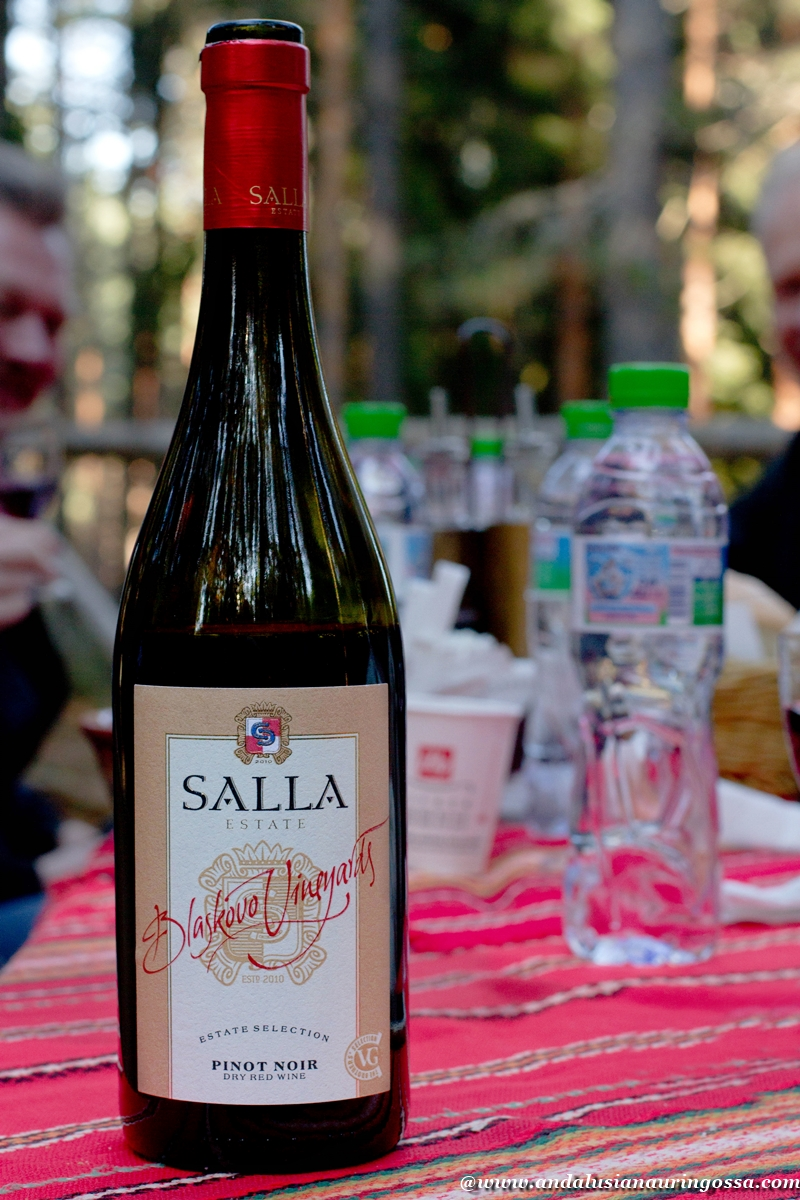 Andalusian auringossa_viinimatkalla Bulgariassa_Salla Estate_Pinot Noir