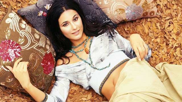 Emmanuelle Chriqui HD Wallpapers Free Download