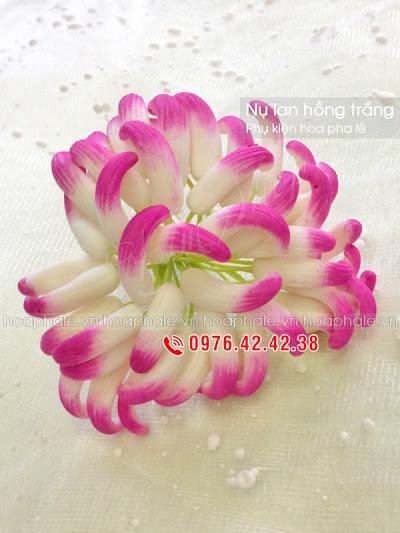 Phu kien hoa pha le tai Pham Dinh Ho