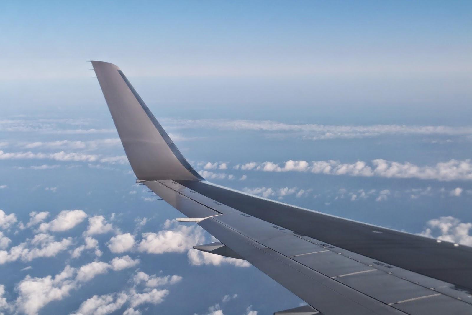 winglet-767-300ER-jal
