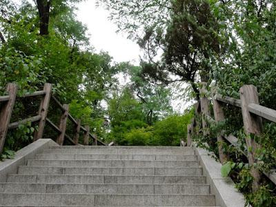 Namsan Walking Trail Seoul South Korea