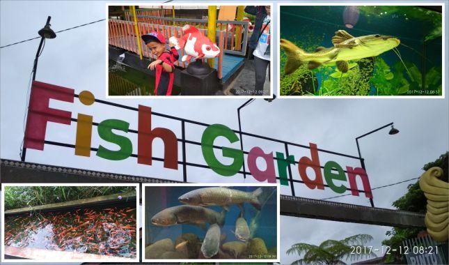Berkunjung Ke Fish Garden Blitar