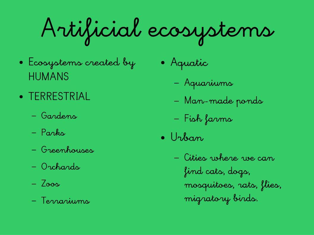 Milaenglish Blog Ecosystems Powerpoint