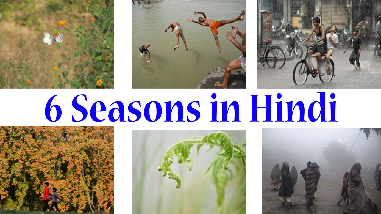 essay on six seasons in india Essay 264 words studymode, there are six seasons such as summer, the rainy  season : my favourite season there are mainly 3 seasons in india winter, summer.
