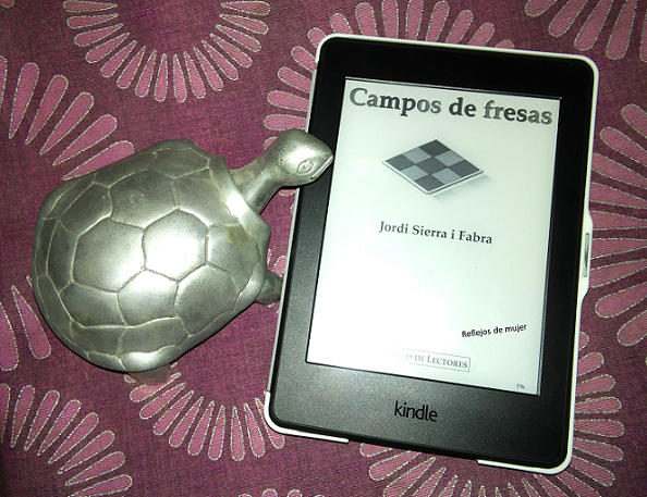 campos_de_fresas