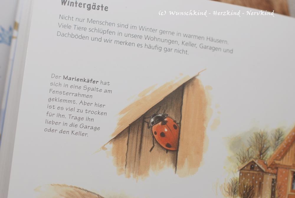 Wunschkind - Herzkind - Nervkind: November 2015