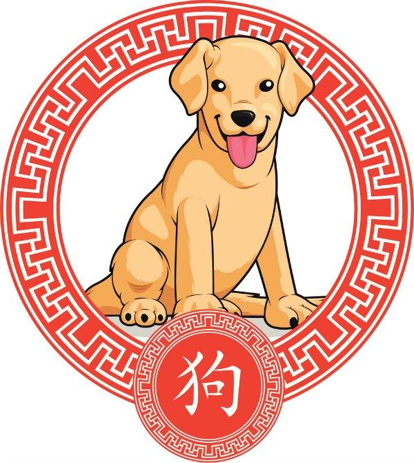 2-2018 al 4-2-2019 nos encontraremos en el año del Perro de Tierra