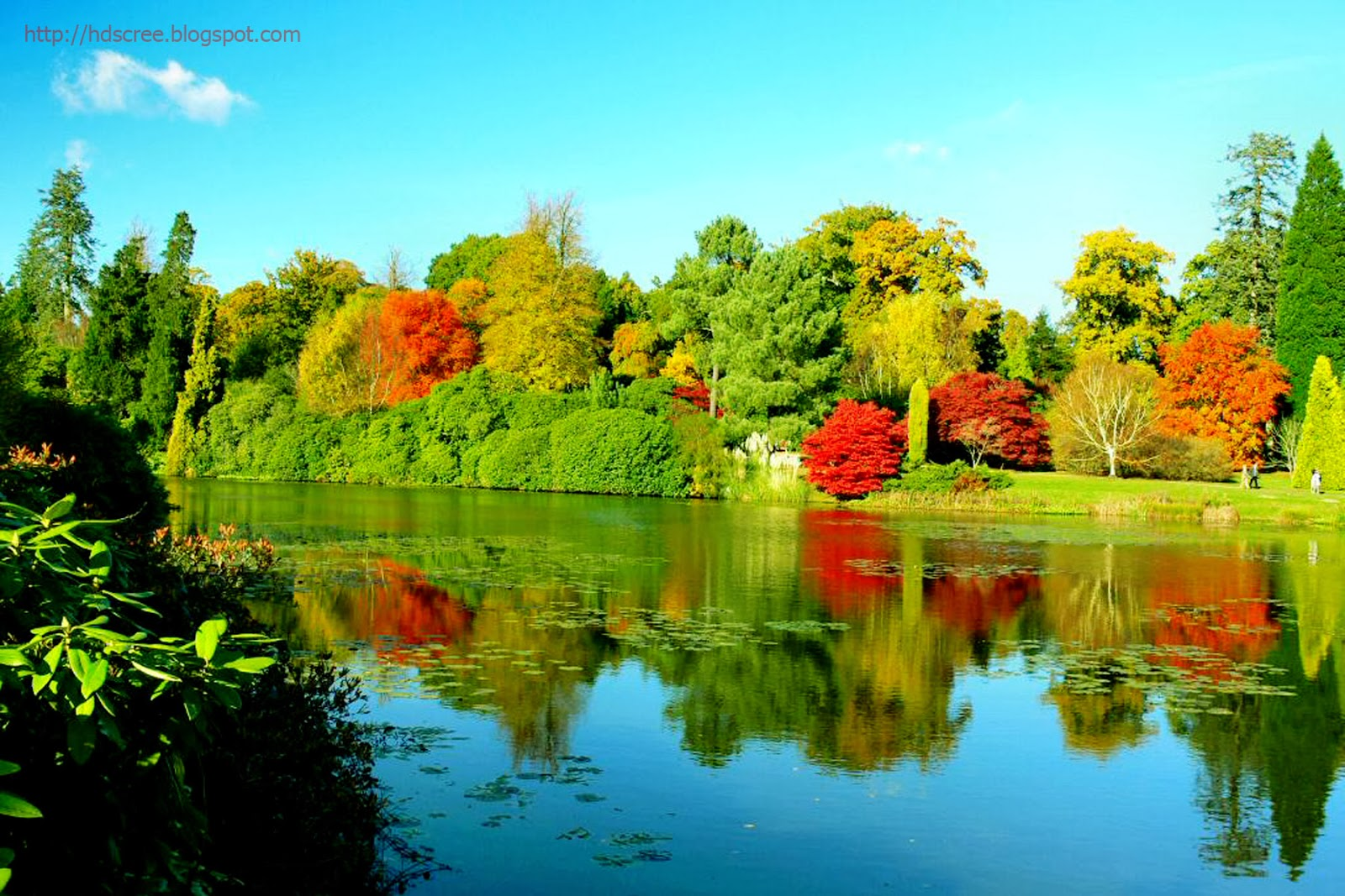 beautiful screensavers site background - photo #5