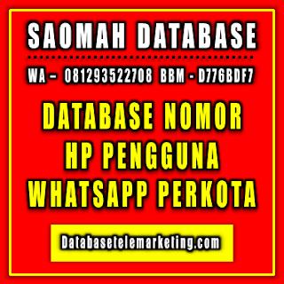 Jual Database Nomor HP Pengguna WhatsApp Perkota