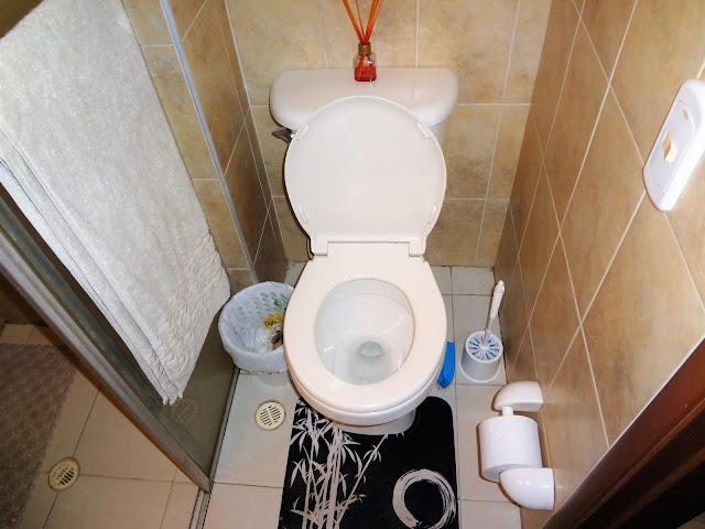 コロンビアのアパートのトイレ